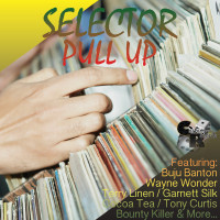selector_pull_up